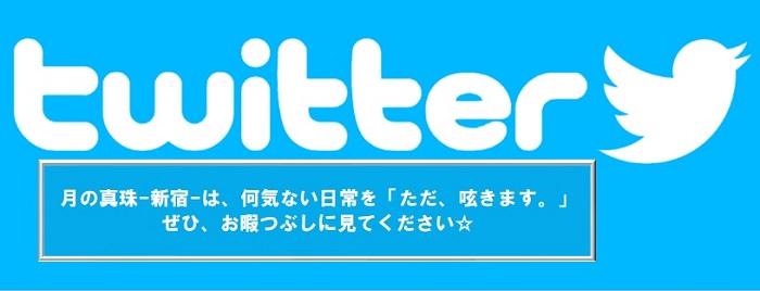月の真珠-新宿-のTwitterバナー